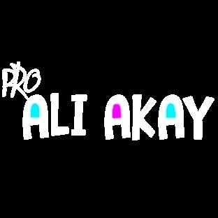 Ali Akay | Webmaster Blog