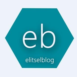 Elitsel Blog