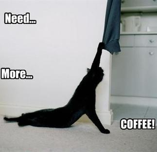 Miss Koffieklets