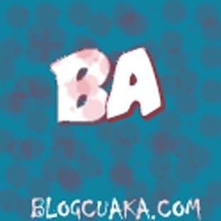 Blogcu Aka