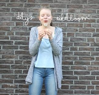 Dilys Eikelboom