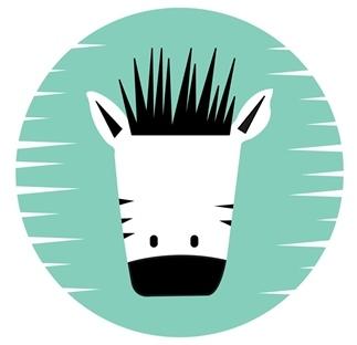 Zebra zonder strepen