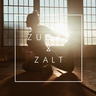 zugar&zalt | fitness mag