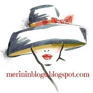Merinin Blogu