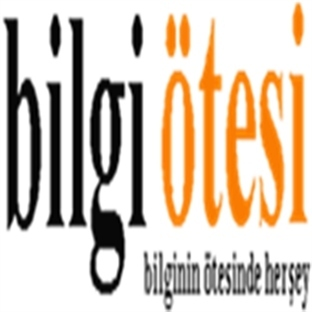 Bilgiotesi.com