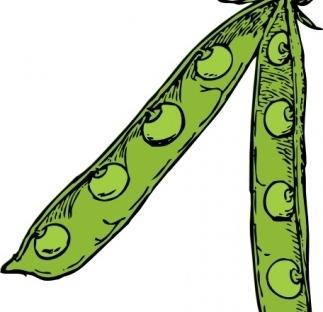 Greenbeen