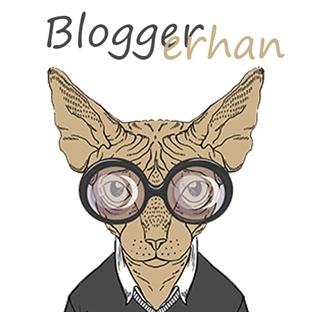 Bloggerhan