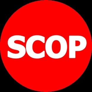 SCOP - Bilgi Merceği