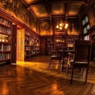 Tecrübeli Kütüphane