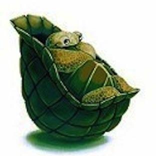 Film Kaplumbağası